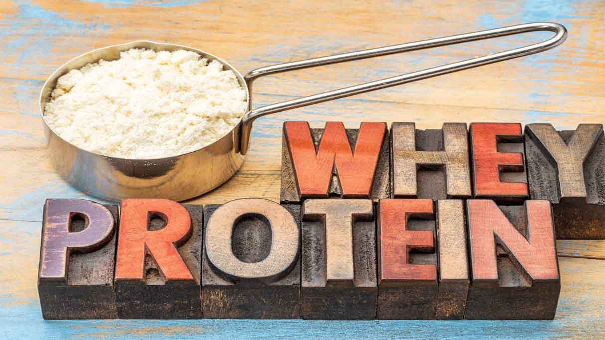 Why protein چیست؟